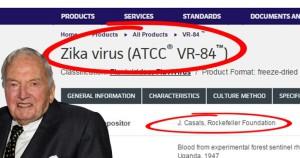 Konspirátoři mají jasno: za virus zika může Rockefelle. Důležité je to ukázat na obrázku jako je tento. Foto: Konspirátoři